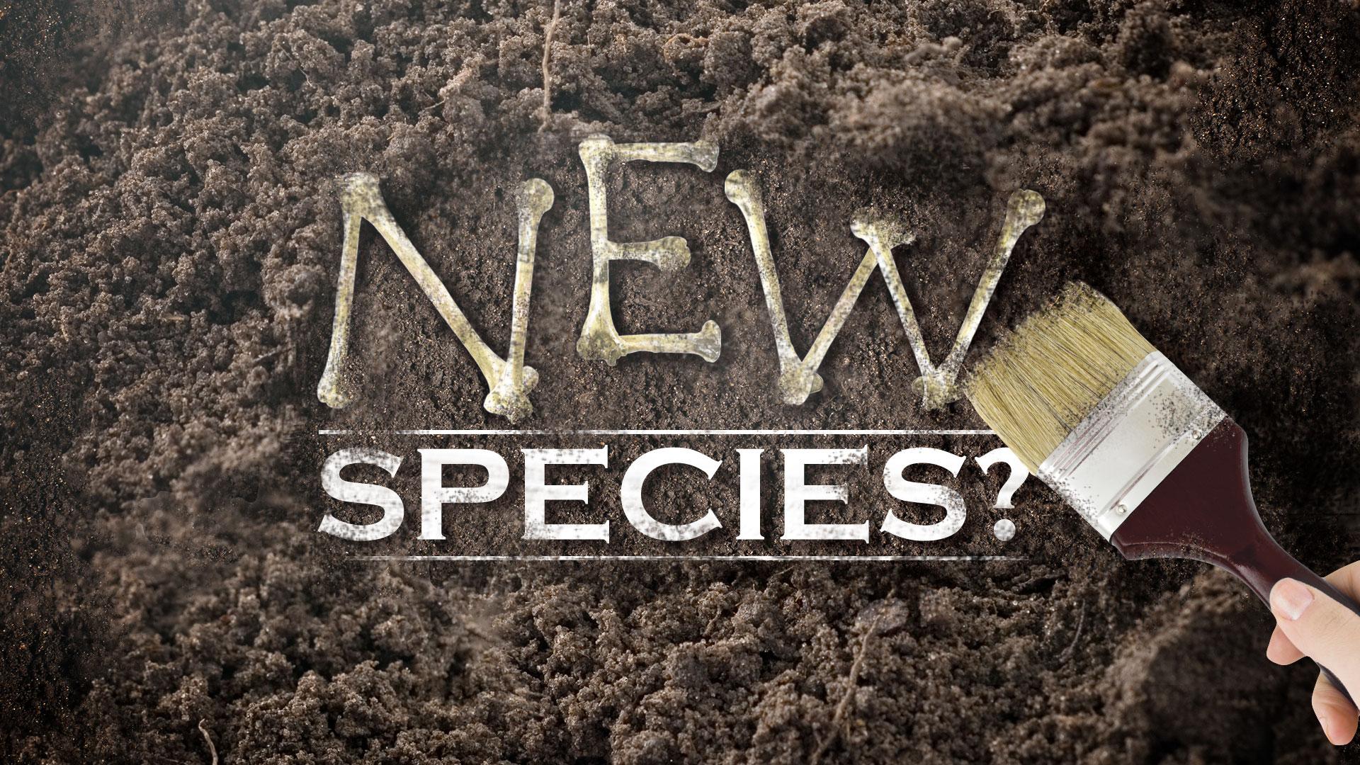New-Species-091015